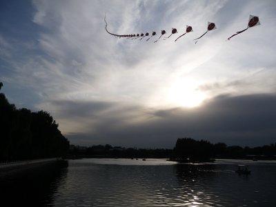 Sunset kite flying over the park