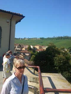 Looking from Barolo