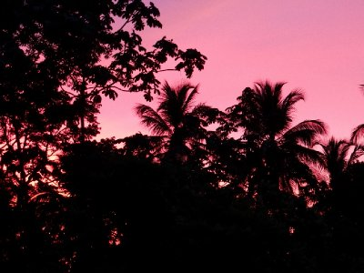 Beautiful pink sky at dusk