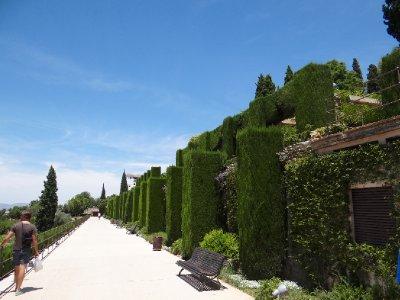 Amazing gardens within the Palace