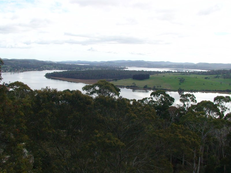 Tamar river from Bradeys Lookout