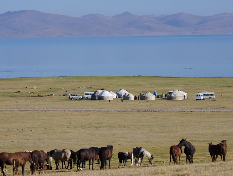Horses graze above our Yurt Camp at Son Kul Lake, 20 August 2012