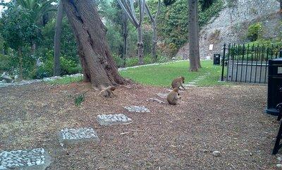 TheTrafalgar Cementary and three locals