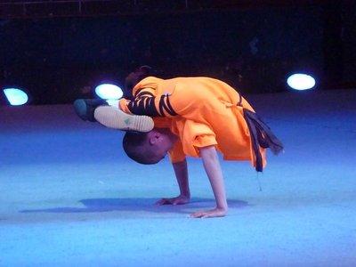 Mini Kung Fu master