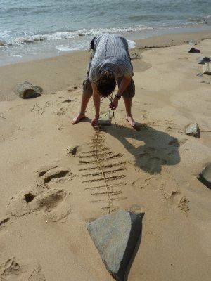 It's amazing what can keep you amused on a beach!