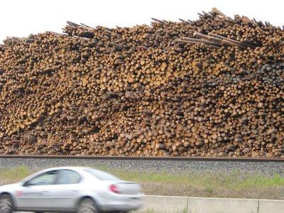 Timber LAND!