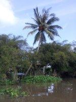 2011-11-09_09_43_36.jpg