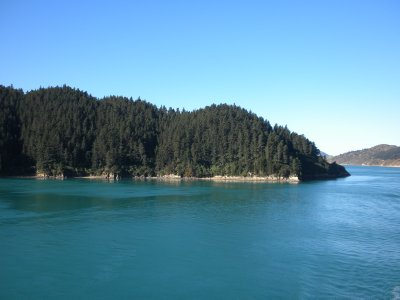 ferry_3_-_into_pICTON.jpg