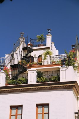 Beautiful roof top garden in Seville