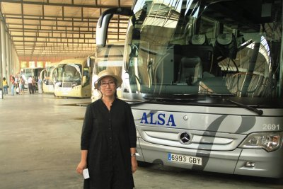 ALSA bus company has a good network covering most of Spain.