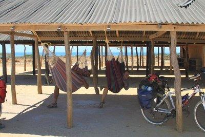 risa jared hammocks
