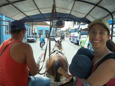 riding horse wagon