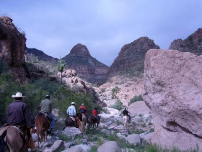 Riding mules to cave paintings