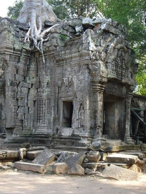 Ta Phrom, Ankgor Cambodia