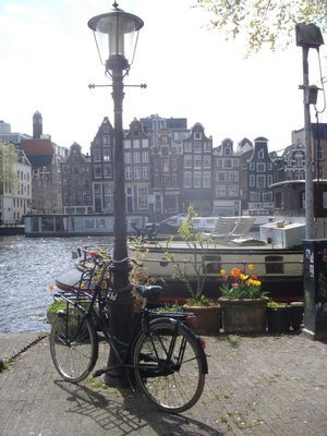 Quintessential Amsterdam:  Bicycle, lamp post, tulips, houseboat, canal