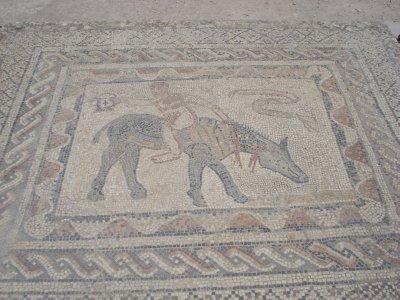 Ancient mosiac in Volubilis