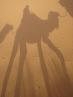Silhouette of Jennifer on her camel