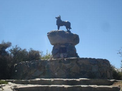 Monument  to Sheep Dogs who helped build Tekapo Area
