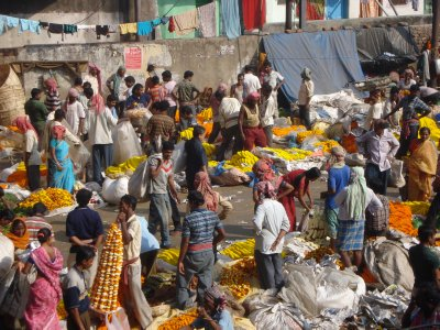 Kolkata's Malik Ghat flower market -- for a market in India, this is a low turnout.