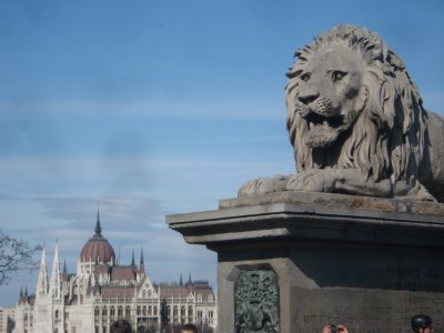 Lion on the Chain Bridge with Parliament across the Danube