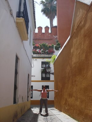 Narrow alleyway outside of the Alcazar, Sevilla
