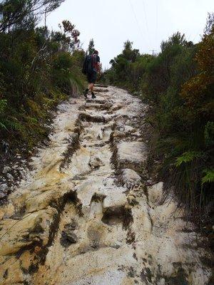 NZ_day_7-9_028.jpg