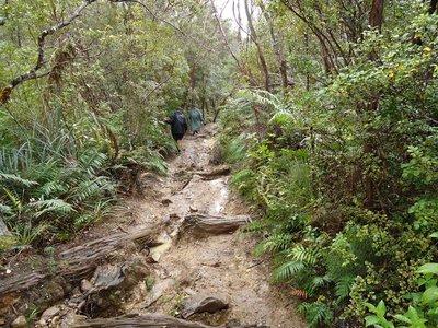 NZ_day_7-9_057.jpg