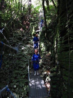 Waitomo_Caves_031.jpg