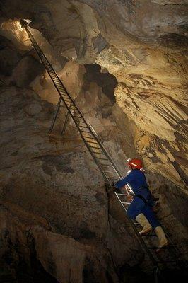 Waitomo_Caves_079.jpg