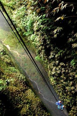 Waitomo_Caves_085.jpg