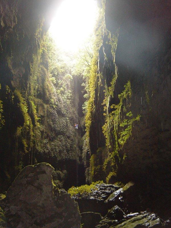 large_Waitomo_Caves_057.jpg