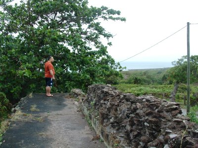 New River Coconut Walk Estates - Old Suger Mill Ruins, Nevis, West Indies, May 2011 (9)
