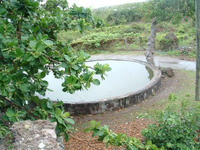 New River Coconut Walk Estates - Old Suger Mill Ruins, Nevis, West Indies, May 2011 (10)