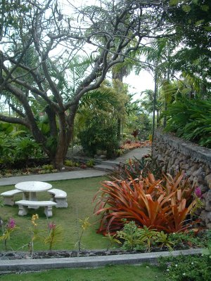 Botanical Gardens, Nevis, West Indies, May 2011 (16)