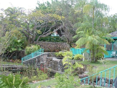 Botanical Gardens, Nevis, West Indies, May 2011 (21)