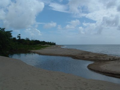 Nevis, West Indies, May 20, 2011 (17)