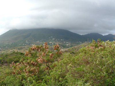 Saddle Hill Hike, Nevis, West Indies May 2011 (1)