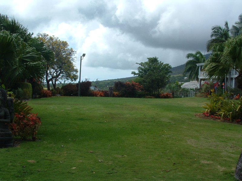 Botanical Gardens, Nevis, West Indies, May 2011 (6)