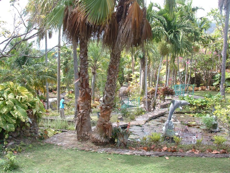 Botanical Gardens, Nevis, West Indies, May 2011 (23)