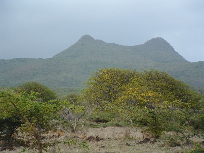 Saddle Hill, Nevis, West Indies, May 20, 2011 (28)