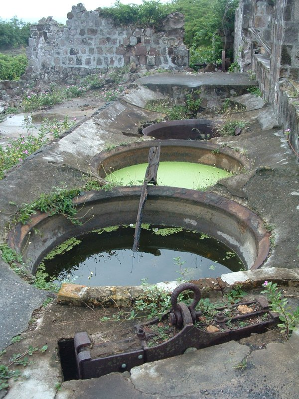 New River Coconut Walk Estates - Old Sugar Mill Ruins, Nevis, West Indies, May 2011 (28)
