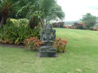 Botanical Gardens, Nevis, West Indies, May 2011 (5)