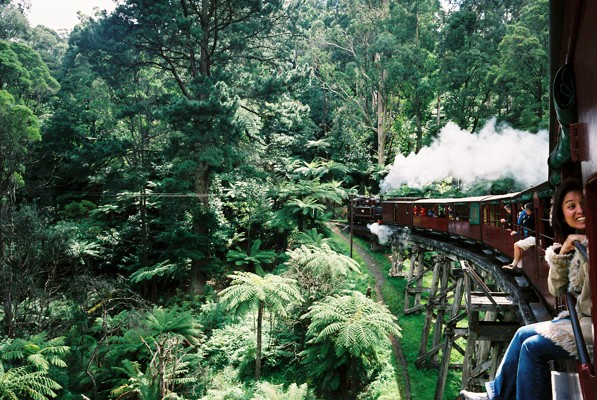 Puffing Billy, Mt Dandenong