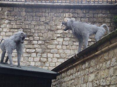 Monkeys made of steel