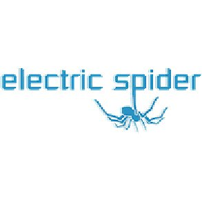electricspiderBIG