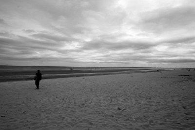 utah DDay landing beach