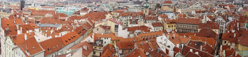 large_roofs-4.jpg