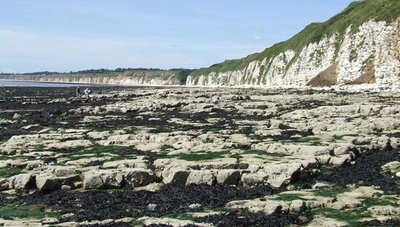 Rock pools at Flamborough Head