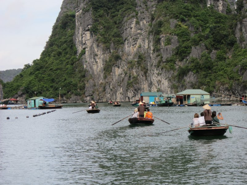 Halong eclipse sail tour, eclispe sail halong bay tour, halong cruise tour