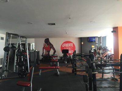 caert_gym